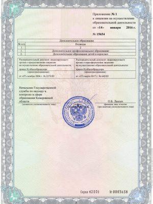 Приложение к лицензии на образовательную деятельность, стр.3